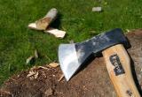 В Югре судят «черного лесоруба» за вырубку деревьев на 50 миллионов