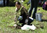 Юные лесоводы Нягани привезли награды со слета «Сохраним цветущий мир Югры»