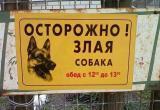 В Сургуте полицейские застрелили агрессивную собаку
