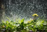 В первый день лета в Югре сохранится ненастная погода