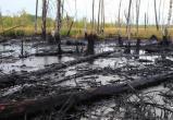 На месторождении «Лукойла» в ХМАО прорвало трубу. Нефть течет рекой. ВИДЕО