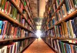 Главбух городских библиотек Ханты-Мансийска осуждена за хищение 2,3 млн рублей