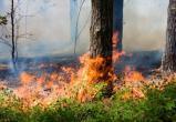 ВНИМАНИЕ! В Нягани объявлен 4 класс пожарной опасности