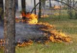 На территории Югры прогнозируют чрезвычайную пожароопасность