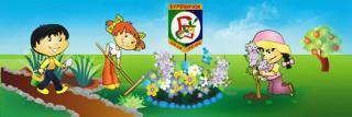 Центр развития ребенка - детский сад №5
