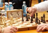 Комарова договорилась с президентом «Лукойла» о спонсировании шахматной олимпиады в ХМАО