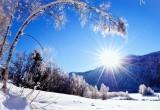 Умеренный мороз и слабая метель. Прогноз погоды в Югре на выходные и начало следующей недели