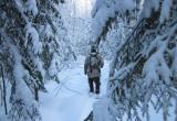 В Берёзовском районе пропал охотник. Собака вернулась домой без хозяина