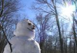 В Югру пришло потепление. 14 февраля местами будет всего 3 градуса мороза