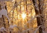 15 февраля югорчан ждёт умеренный мороз и южный ветер