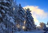 В Югре сохранится умеренно морозная погода