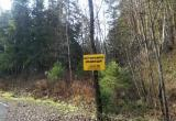 В Ханты-Мансийске временно закрыли биатлонный центр из-за медведя