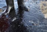 Аварии на нефтепроводах в Югре причинили ущерб землям площадью более 16,5 тыс. гектаров