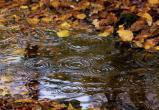 Дожди и ветер ожидаются в Югре во вторник