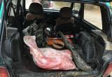В Советском районе задержали браконьера, застрелившего лося