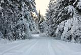 В субботу в Югре будет умеренная морозная погода