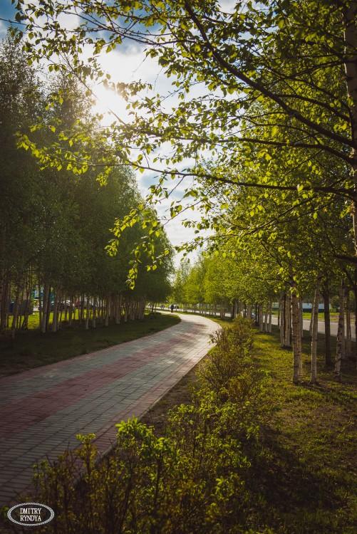 Фото Виды города
